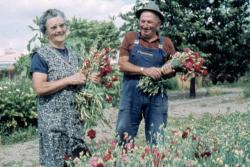 papy-et-mamy-aux-fleurs.jpg